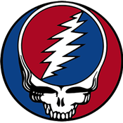 Grateful Dead Lightning Skull Logo from the Double Live Album Steal Your Face